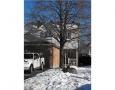 Real Estate -  32B Woodford, Ottawa, Ontario -